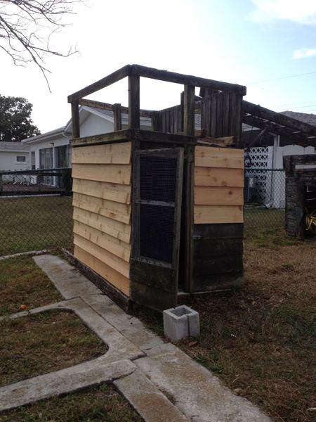 Building A Duck House Backyard Ducks